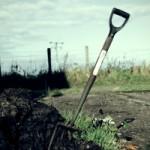 gardening-2-1318768-m