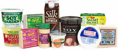 soy-cheese-ice-cream-milk-soy-spread