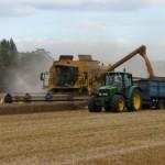 harvesting-641913-m