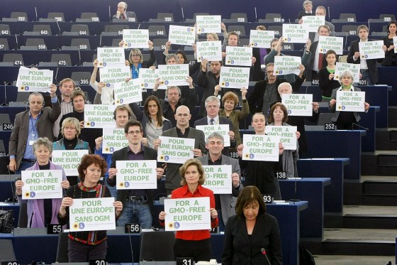 1024x683xanti-GMO-protest-at-European-Parliament1.jpg.pagespeed.ic.mrX4gErB9R