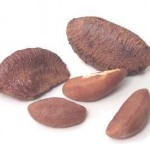 brazilnuts5