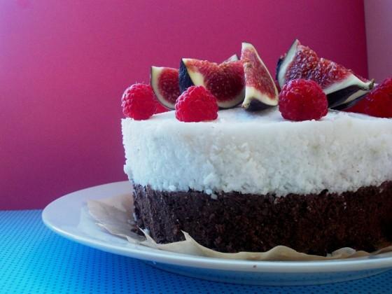 Oelschlagerova_Katarina_Fazulovo_kokosova–torta